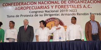 Armando Rendon